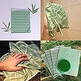 PRIMEO 5er Set Geschirrtücher, Reinigungstuch, Bambus-Tuch, Reinigungsschwamm, Bambus-Fasern, saugstark, ohne Fusseln ohne Schlieren, zeitsparend, mühelos, kristall-klar reinigen, entstauben, trocknen, polieren, auch als Multi-Pack, (hellgrün) - 8